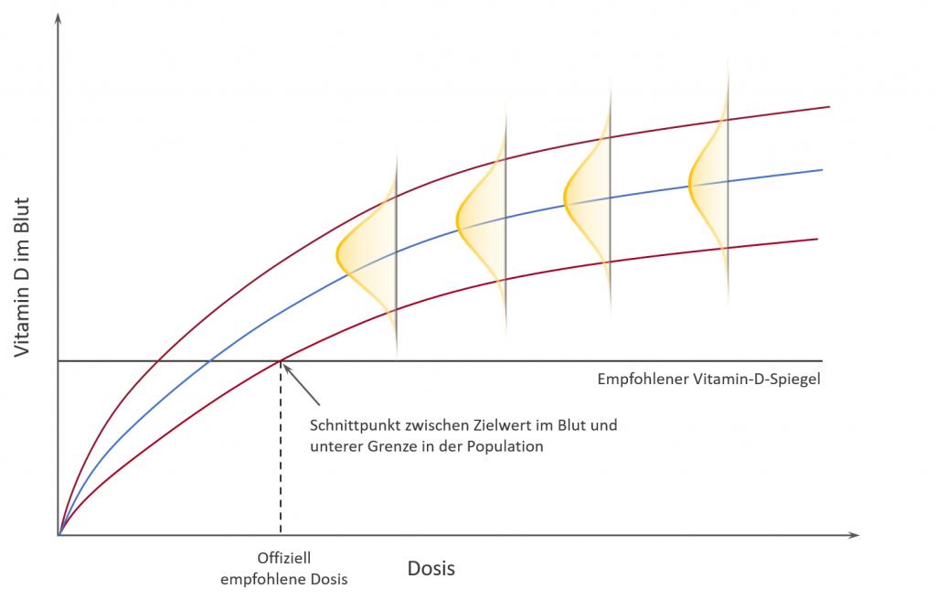 Für verschiedene Dosen ergibt sich eine Kurve, welche den Zusammenhang zwischen Dosis und Blutspiegel des Vitamins D beschreibt. 2,5% landen bei gegebener Dosis unterhalb der unteren roten Linie.